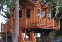 Tree Houses / by Lonna Dickey