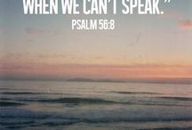 Psalms / by Janet Lubbers