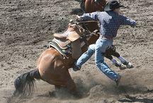 cowboys / by Sonya Hill