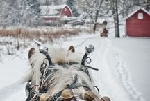 I'll be home for Christmas / by Marcia Munger