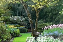 Gorgeous gardens to visit / by Sue Mings