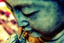 Zen / by Cindi Eldred
