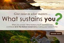 "What Sustains You? / Now through November 22, 2013 The Nature Conservancy and bambeco are working together to answer the question, ""What Sustains You?"" Each time this question is answered, bambeco will contribute $2 to support the Conservancy's work around the globe. The company will contribute a minimum of $10,000 (up to $20,000). / by Bambeco"