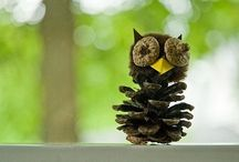 I love owls / by Jamie Timmer-Bisek