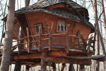 Treehouses / by Mary Mcdaniel