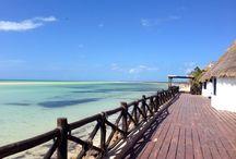 Isla Holbox / by Visit Cancun