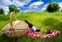 Picnics, Camping, and Other Fun activities / by Larisa Briggs