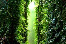 green chapel ideas / by Sunny S