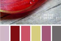 scrapbook/color palette ideas / by Nancy Brandt