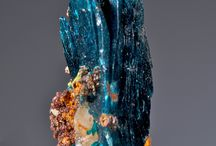 Crystals, stones, shells / by Jenny Mehlenbeck