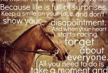 Equestrian / by Lara Neill