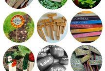 Garden and Outdoors / Garden and Outdoor ideas.  / by Sage Karras