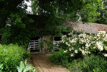 Patina Farm Stable Inspiration / by Brooke Giannetti