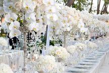 Wedding / by Beth Darby