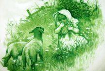 sheep / by Sherrie Petersen