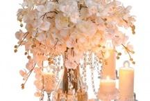 Marinas wedding / by Christi Gamble