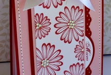 Daisy Delight / by AnnaBelle Stamps