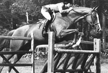 Everything Equestrian / by Kate Thomas