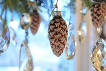 Christmas:  ornaments / by Monette McNaughton