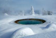Yellowstone Love / by Lindsey Gajewski