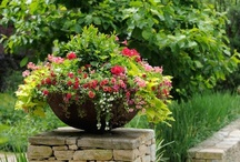 Creative Containers / Beautiful container gardens that inspire us! / by PasquesiHome&Gardens