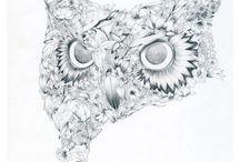 Owls / by Paula Kochan Radl