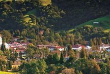 Beauty  / by Saint Mary's College of California