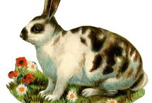 Holiday: Easter / Easter holiday decor and ideas. / by Tara Wells