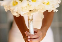 Wedding / by Boram Hong
