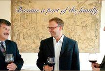 Angelini Wine, Ltd. Wine Importer/Distributor / About Angelini Wine, Ltd.   / by Angelini Wine