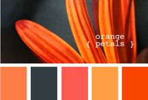 Color Swatches / by GotFree Energy.com