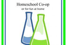 Homeschool co-ops / by Betty Hill