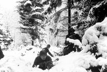 The battle of the Bulge (16/12/1944 => 25/01/1945) / by Ingrid Goossens