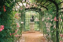 outdoor spaces / by Vicki Lang
