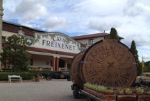 Freixenet Events / Freixenet Events and Campaigns around the United States / by Freixenet
