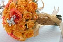 ~ Cinderella Think Orange ~ / by Loni R Colin