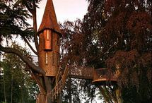 Tree houses / by Alice Ratterree