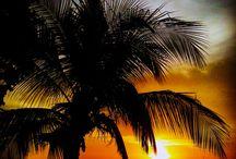 Pura Vida! CR, Panama / Plans for Costa Rica and panama / by Tori Newell