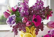 Flowers <3 / by Tammi Janiga
