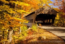 Covered Bridges / by Nancy Pate