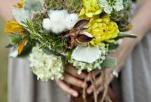 weddings / by Cindy Gast