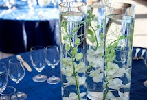 Exceptional Events! / We arranged photo shoots with some of our favorite venues to showcase our florals, linens and lighting.  Our sister photography company Next Generation Images shot the absolutely fabulous photos! / by Madison Floral