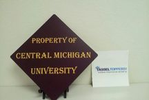 Decorated Graduation Caps - 2014 / Decorated Grad Caps from Tassel Toppers Best Grad Cap Designs / by Tassel Toppers