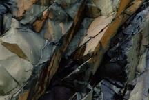 lichen moss stone patterns / by .seanc.