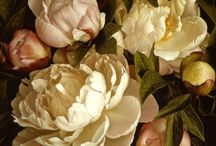 Artist :: Floral Paintings by Mia Tarney / by Royce Becker