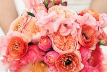Coral / Peach Wedding Ideas / Ideas and inspiration for a coral/ peach wedding / by French Wedding Style - Wedding Blog