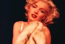 Marilyn M. / by Cristalle Pronos