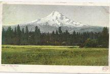 Postcards / by Senior List