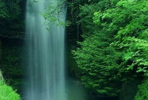 Places I want to visit / by Mariah Sagala