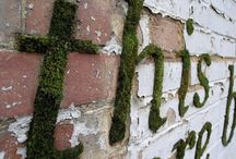 gardening / by Sally Petit